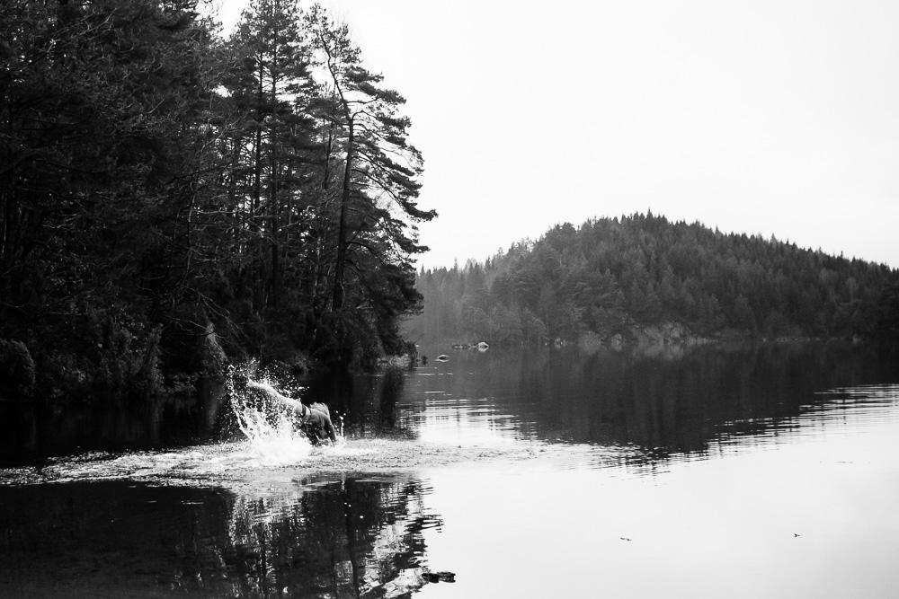 Foto: André Berg